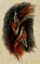 Аватар пользователя Dark Fox